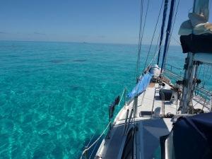 2012_hogsty_reef_bahamas-16